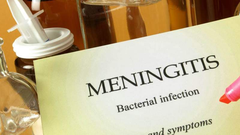 Exploring the Different Types of Meningitis